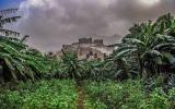 الصورة: الصورة: صور .. قرية ذي عين التراثية السعودية .. جمال يخطف الأنظار