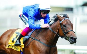 الصورة: الصورة: انتصارات قوية لخيول الإمارات على المضامير الإنجليزية