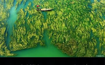"""الصورة: الصورة: جائزة حمدان بن محمد الدولية للتصوير تُعلن الفائزين بموسم """"الماء"""""""