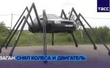 الصورة: الصورة: شاهد.. السيّارة العنكبوتية