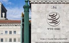"""الصورة: الصورة: """"التجارة العالمية"""" إجراءات المملكة ضد قطر مبررة لحماية مصالحها الأمنية"""