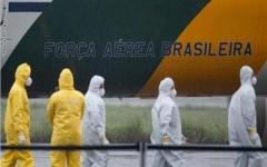 الصورة: الصورة: البرازيل على أعتاب 50 ألف وفاة بكورونا