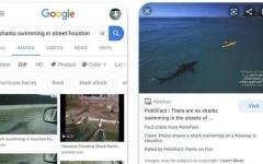 """الصورة: الصورة: """"غوغل"""" تضيف خدمة تقصي الحقائق إلى الصور"""