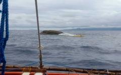 الصورة: الصورة: فقدان 14 شخصاً بعد غرق قارب صيد فلبيني