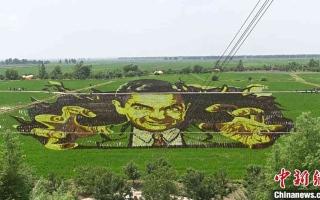 """الصورة: الصورة: """"مستر بين"""" يظهر في حقول الصين"""