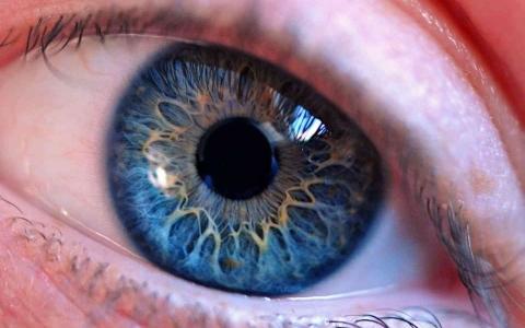الصورة: الصورة: دراسة تثبت علاقة الضوء الأحمر بتحسين القدرة البصرية