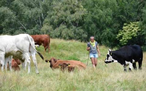الصورة: الصورة: شابة إيطالية تعتزل حياة الصخب لتربي الأبقار