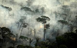 بالفيديو.. الأمازون تشهد أسوأ حرائق غابات منذ 13 عاماً