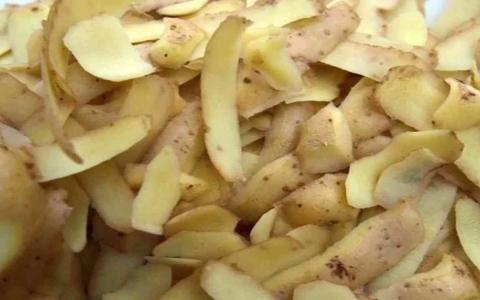 الصورة: الصورة: قشر البطاطس .. كنز من الفوائد يقوي المناعة ويعيد الشباب