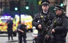 الصورة: الصورة: إصابة 7 من الشرطة خلال أحداث عنف بحفل موسيقي  في لندن