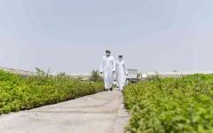 الصورة: الصورة: محمد بن زايد يزور مزارع نموذجية للمواطنين في أبوظبي