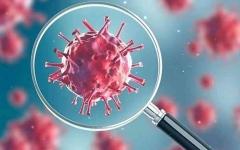 الصورة: الصورة: علماء يؤكدون أن الهواء يحمل فيروس كورونا