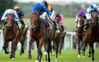 الصورة: الصورة: خماسية لخيول الإمارات  في ختام «جولاي كب»