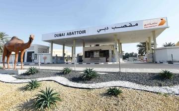 الصورة: الصورة: 4 تطبيقات ذكية في دبي لطلب الأضاحي