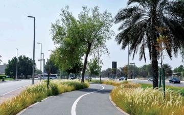 الصورة: الصورة: بلدية أبوظبي تنجز أعمال تطوير وتجميل ممشى المشرف