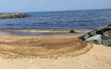 الصورة: الصورة: احتواء التسرب النفطي في خورفكان
