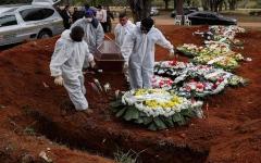 الصورة: الصورة: أكثر من مليوني إصابة بكورونا في البرازيل