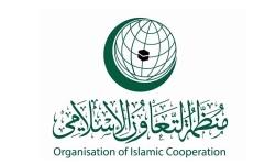 الصورة: الصورة: الإمارات توجّه بياناً خطياً إلى مجلس الأمن بشأن فلسطين بالنيابة عن «التعاون الإسلامي»
