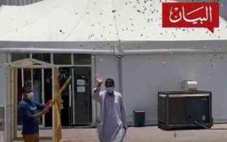 """الصورة: الصورة: مستشفى الفجيرة الميداني يحتفي بخروج آخر مصاب بـ """"كورونا"""""""