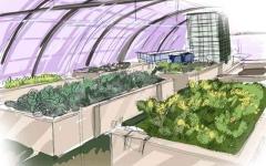 الصورة: الصورة: التكنولوجيا الزراعية تلعب دوراً مهماً خلال الوباء