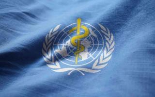 الصورة: الصورة: منظمة الصحة: لا حل سحرياً لفيروس كورونا