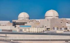 """الصورة: الصورة: رئيس معهد الطاقة النووية بأمريكا: """"براكة"""" نموذج للمنطقة بمجال تنويع مصادر الطاقة"""