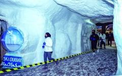 الصورة: الصورة: إقبال كبير على  «أسبوع دبي للرياضات الثلجية»