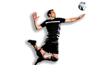 الصورة: الصورة: الكرة الطائرة عودة خجولة وملاعب مهجورة