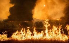 الصورة: الصورة: بالفيديو.. الحرارة المرتفعة تؤجج حرائق الغابات في كاليفورنيا