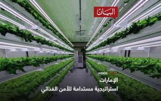 الصورة: الصورة: استراتيجية مستدامة للأمن الغذائي