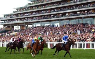 الصورة: الصورة: استمرار تعليق الحضور الجماهيري لسباقات الخيول في بريطانيا