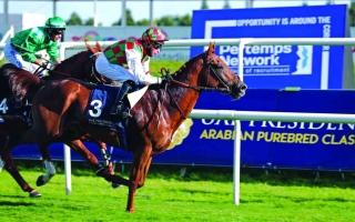 الصورة: الصورة: «هتال»  بطل كأس رئيس الدولة للخيول