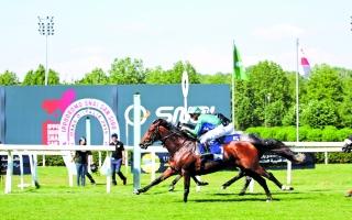 الصورة: الصورة: 8 خيول تتنافس على كأس رئيس الدولة