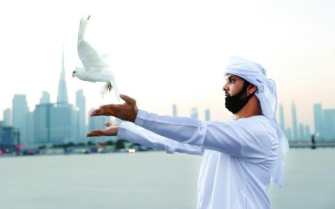 الصورة: الصورة: أجنحة السلام