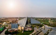 """الصورة: الصورة: """"سفاري دبي بارك"""" تفتح أبوابها أمام الزوار 5 أكتوبر المقبل"""