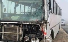 الصورة: الصورة: 3 وفيات بحادث بين حافلتين على طريق الشاحنات في أبوظبي