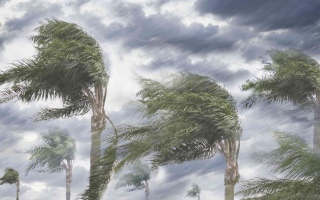 الصورة: الصورة: نفاد الأسماء لتسمية العواصف الجديدة بسبب كثرة الأعاصير