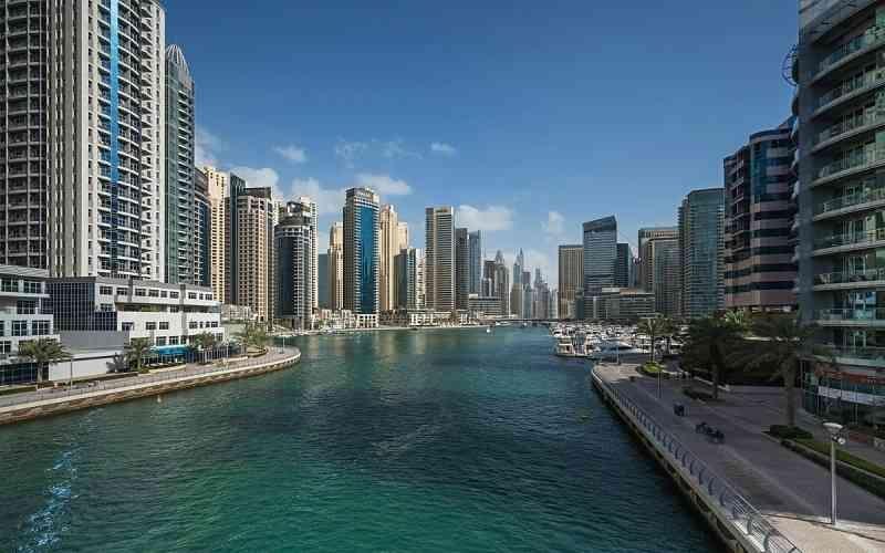 الصورة: الصورة: دبي تعزّز مكانتها في قلب المشهد السينمائي العالمي