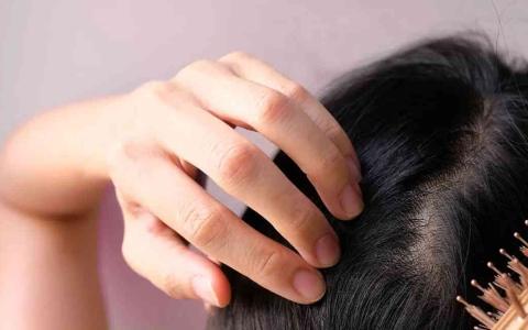 الصورة: الصورة: وجبة إفطار منزلية خفيفة وشائعة يمكن استخدامها لعلاج تساقط الشعر