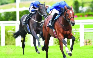 الصورة: الصورة: خيول الإمارات تواجه التحدي في «تترسالز ستيكس» اليوم
