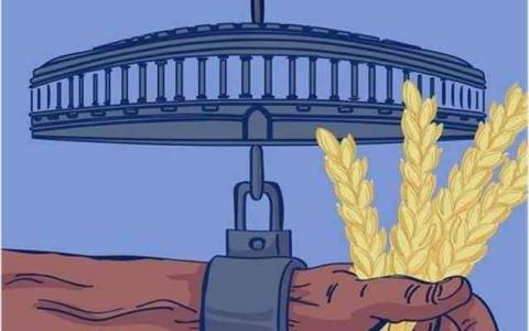 الصورة: الصورة: الكاريكاتور المستفز  ينال اهتمام الهنود