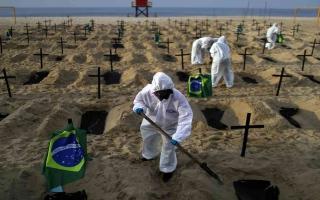 الصورة: الصورة: البرازيل تسجل 32817 إصابة جديدة بكورونا و831 وفاة