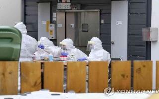 الصورة: الصورة: كوريا الجنوبية تسجل 114 إصابة جديدة بكورونا وحالتي وفاة