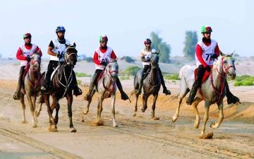 الصورة: الصورة: اتحاد الإمارات يتصدى لافتراءات «دولي الفروسية» ويلجأ  لـ «كاس»
