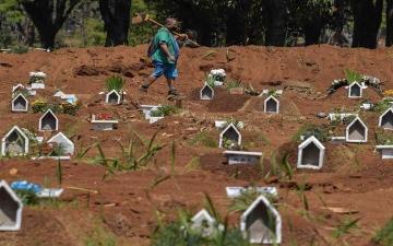 الصورة: الصورة: البرازيل تسجل 14318 إصابة جديدة بكورونا و335 وفاة