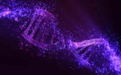 الصورة: الصورة: دراسة حديثة: الكروموسوم واي الذكري له وظائف أكثر مما كنا نعتقد