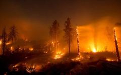 الصورة: الصورة: قطع الكهرباء عن آلاف المنازل بكاليفورنيا لاحتواء حرائق الغابات