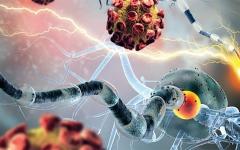 الصورة: الصورة: نماذج حوسبية تتنبأ بتطوّر الأورام السرطانية