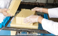 الصورة: الصورة: «صابون الإبل» ينطلق من دبي إلى الأسواق العالمية