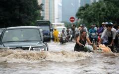 الصورة: الصورة: إعصار مولاف يخلف 31 قتيلا وعشرات المفقودين في فيتنام